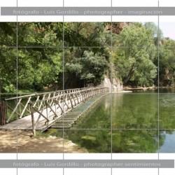 Puente sobre lago