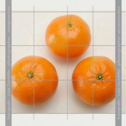 Mandarina clementina vertical