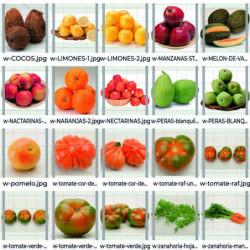 Pack Frutas y verduras 10