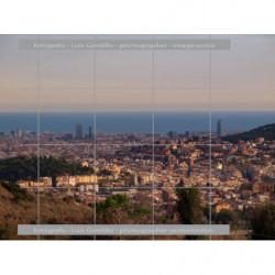 Panoramica de Barcelona