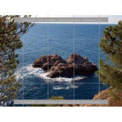 Mirando roca en el mar