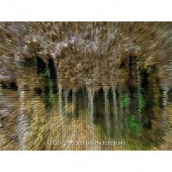 Chorrea fuente monasterio...