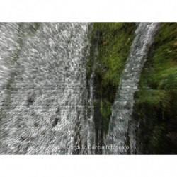 Fuerza del agua