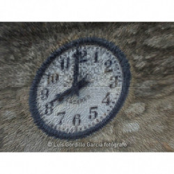 Reloj de la vida
