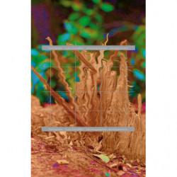 Astillas de madera.jpg