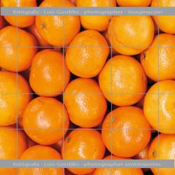 Mural naranjas