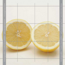 Limon abierto
