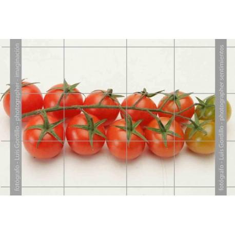 Tomates cheri-1