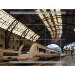 Estación Francia entrando tren