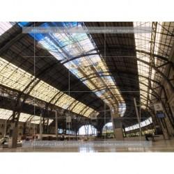 Estacion francia techo