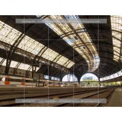 Estacion francia vias