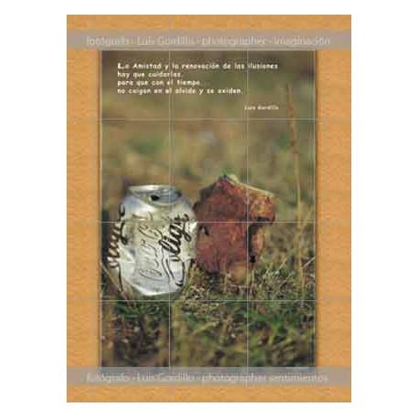Posters-de-papel-Latas-en-bosque