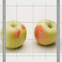 Manzana verde doncella