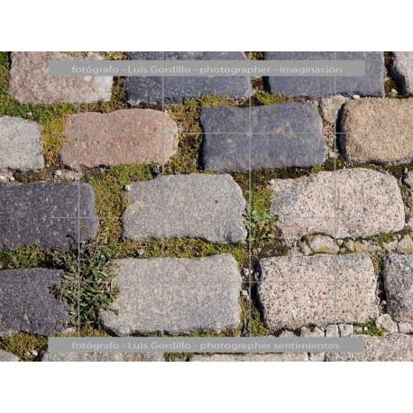 Piedras de adoquin